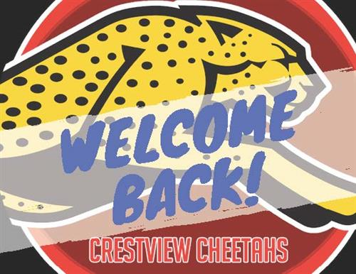 Welcome Back Cheetah Image
