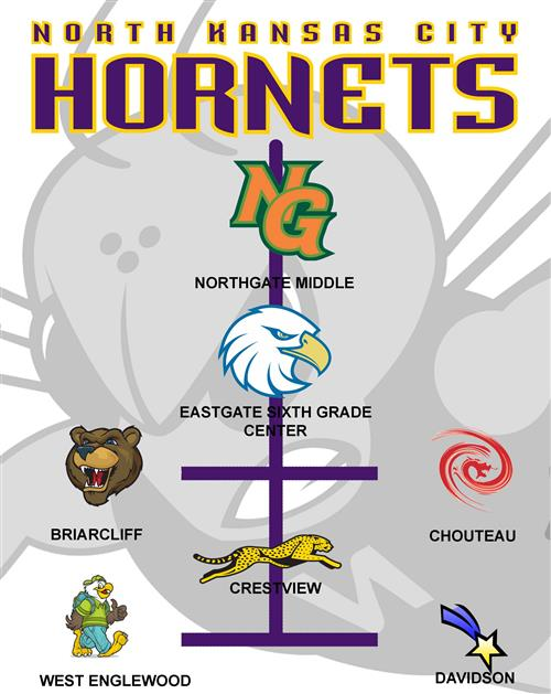 Northtown Feeder Pattern Graphic